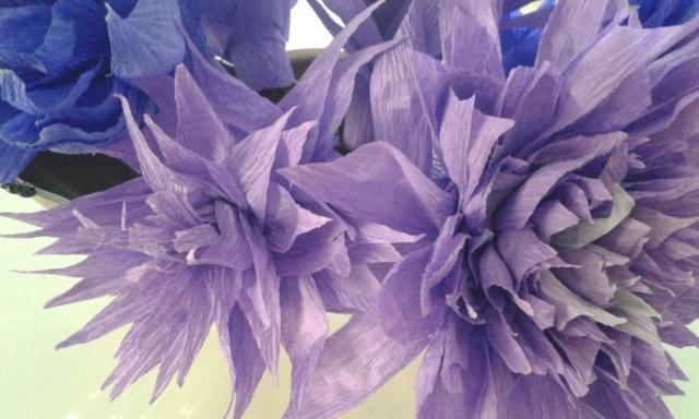 fiori.carta1