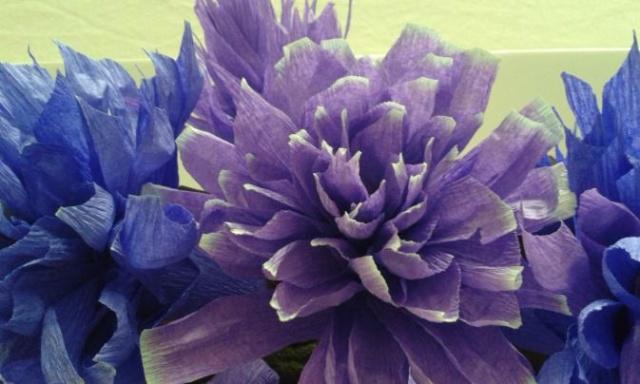 fiori.carta2