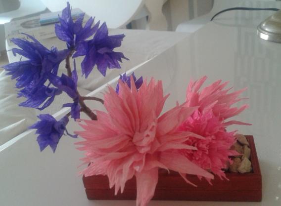 fiori.carta6